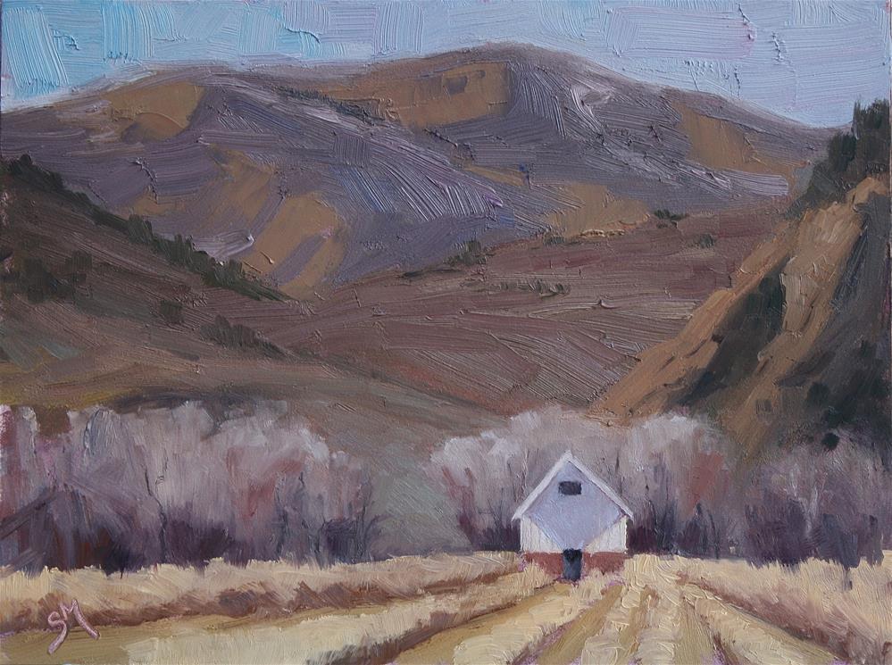 """Old Barn at Hildebrand"" original fine art by Sheila Marie"