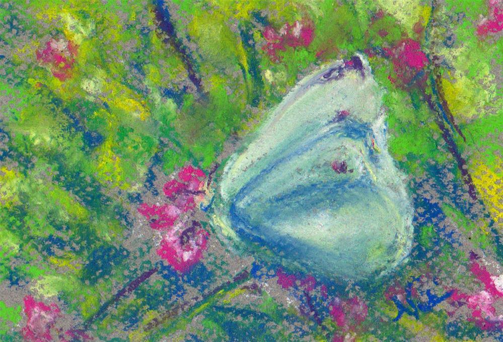 """Mariposa"" original fine art by Niki Hilsabeck"