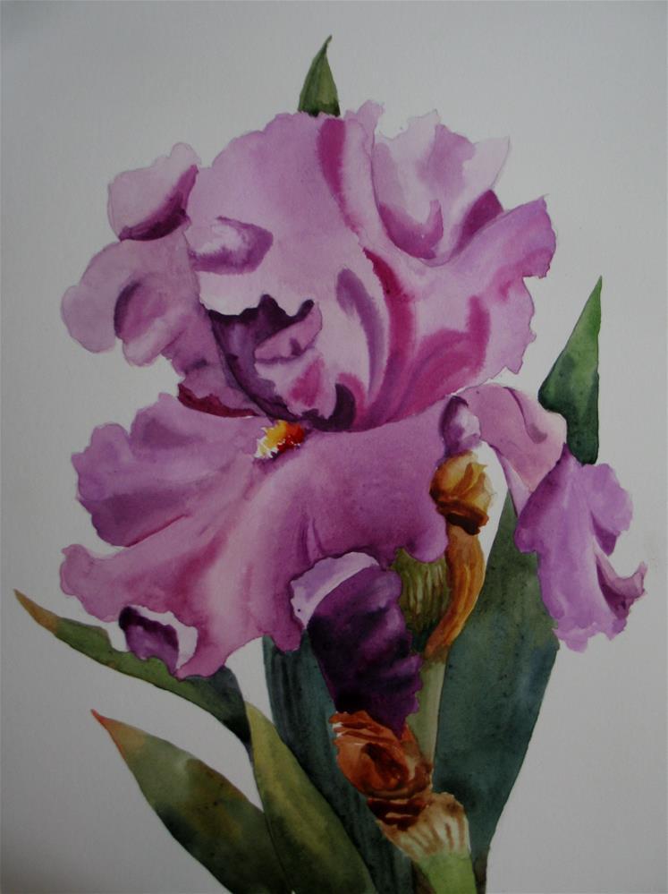 """Iris in Mauve"" original fine art by Nel Jansen"