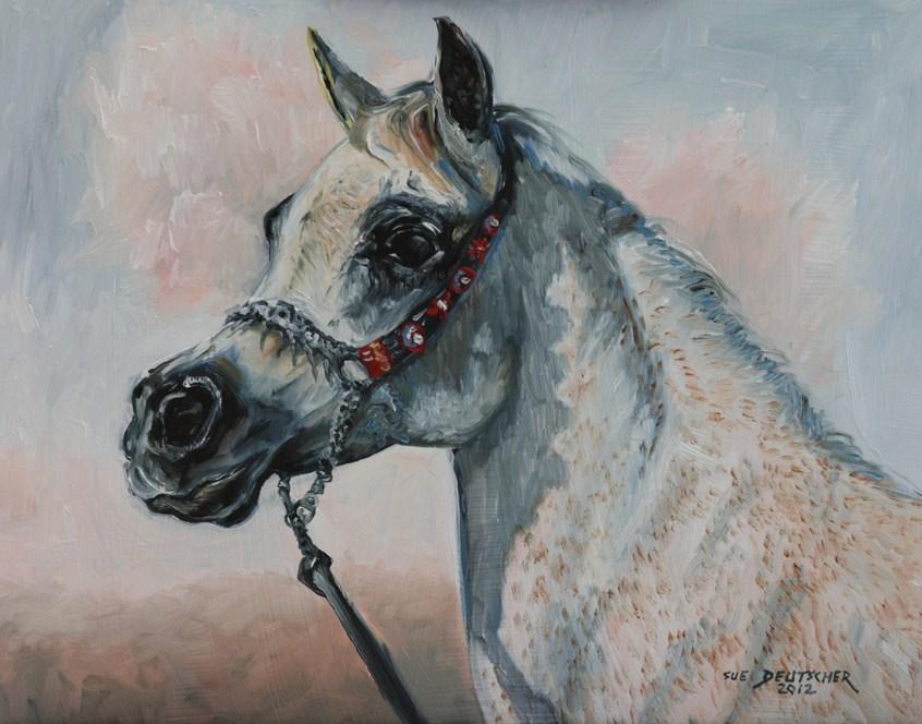 """""""Gray Arabian and Halter"""" original fine art by Sue Deutscher"""