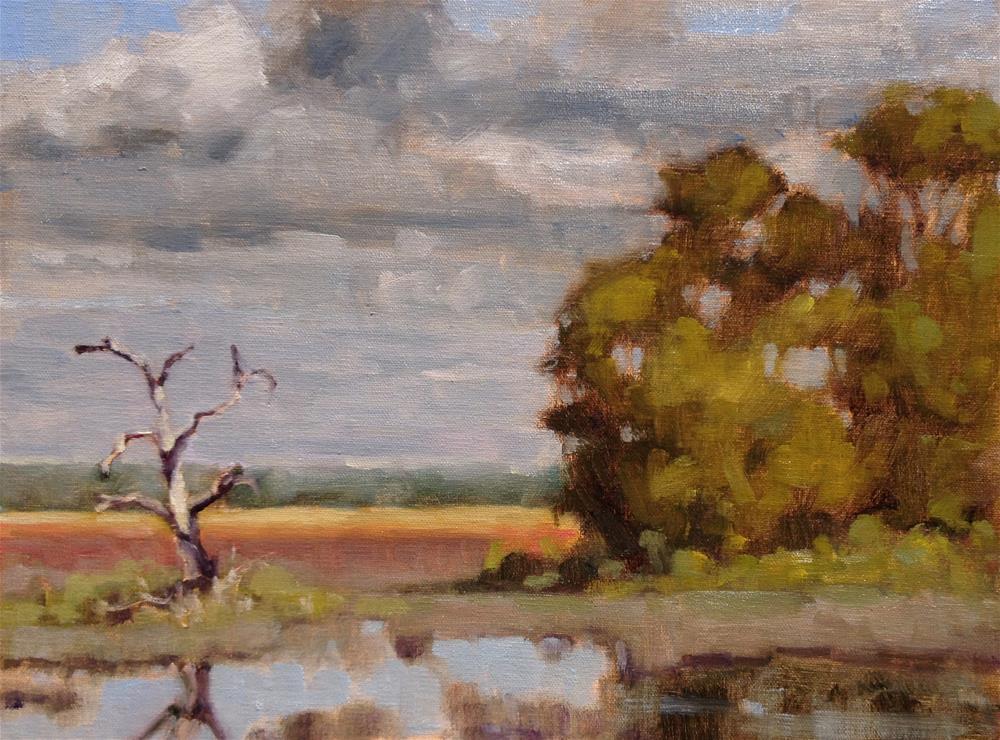 """""""Secret Place"""" original fine art by Colleen Parker"""