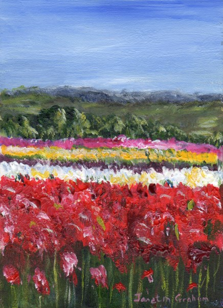 """Tulip Fields ACEO"" original fine art by Janet Graham"