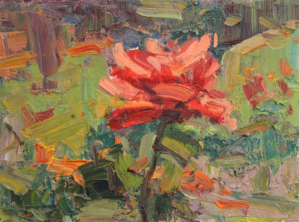 """Red Rose Study"" original fine art by Michael Clark"