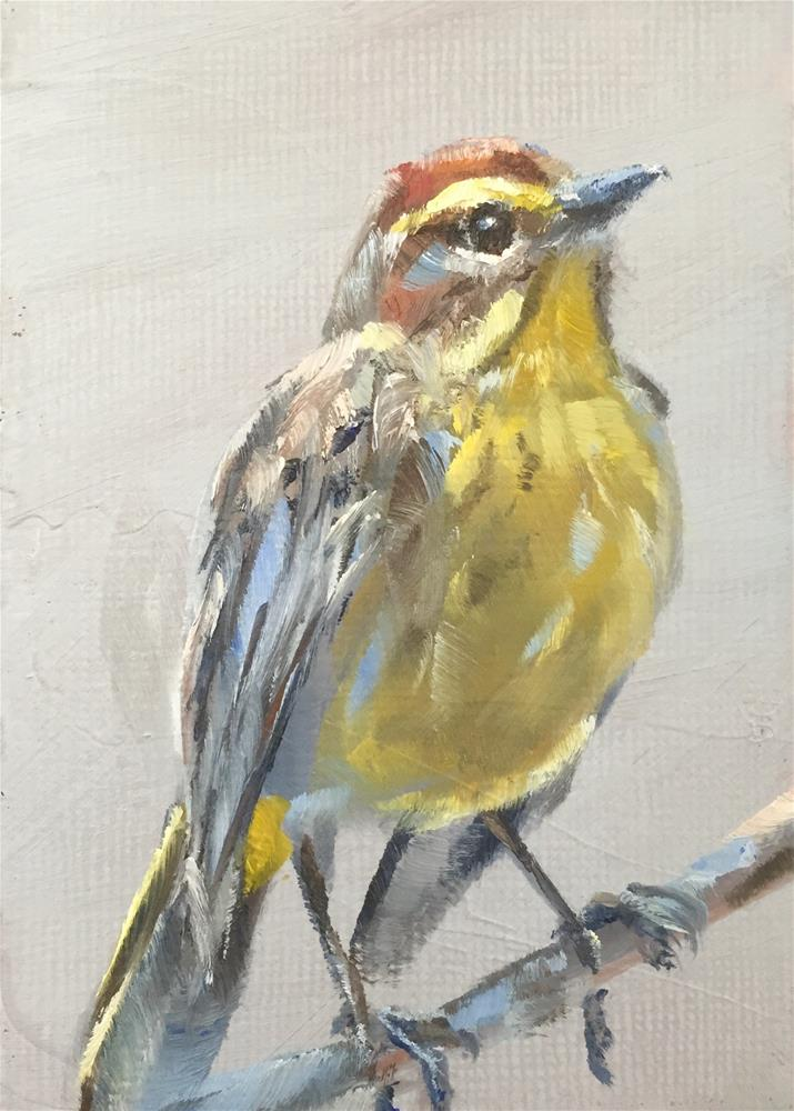 """Palm Warbler"" original fine art by Gary Bruton"