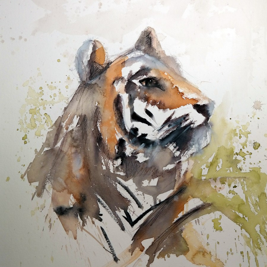 """1534 Amur Tiger"" original fine art by Dietmar Stiller"