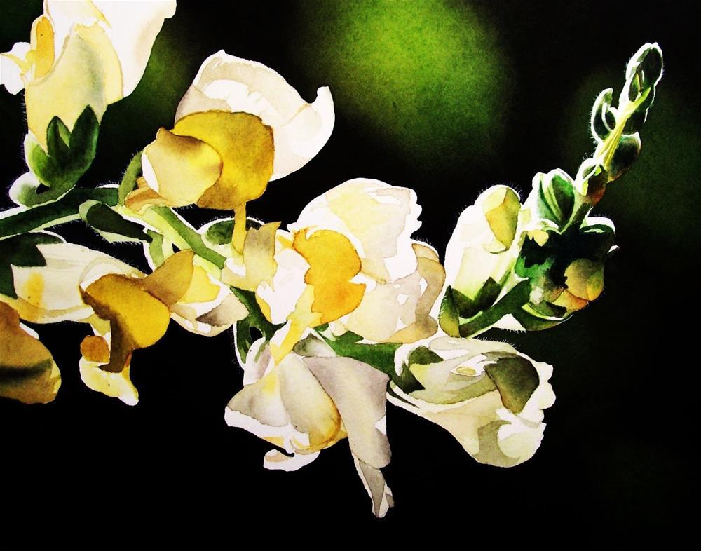 """""""Snap...!"""" original fine art by Jacqueline Gnott, whs"""