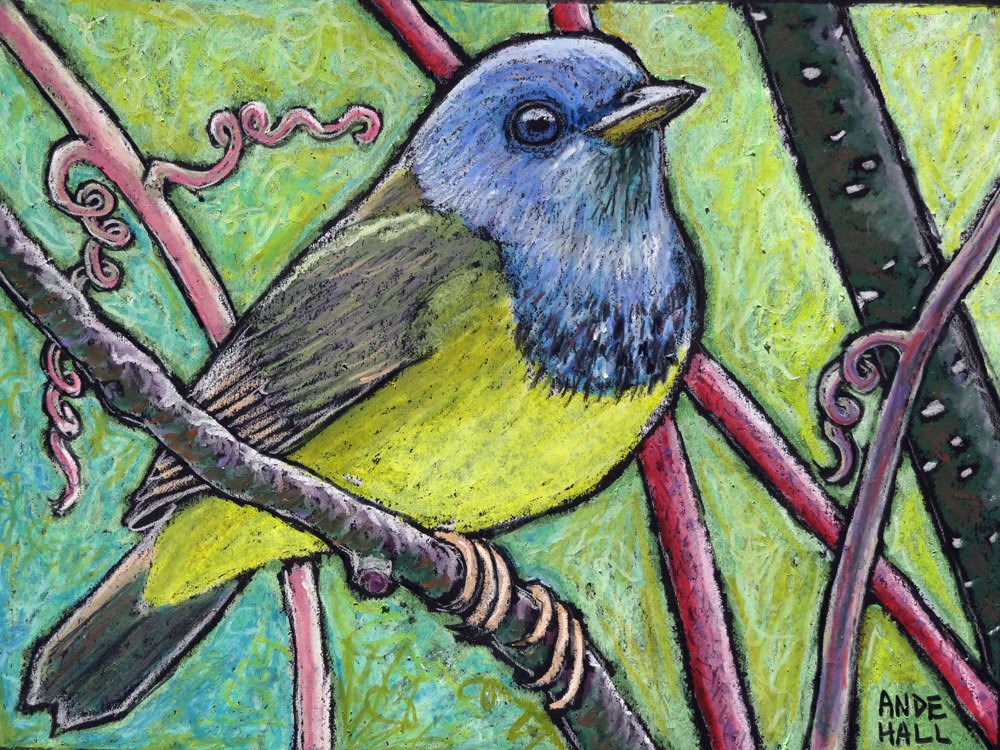 """Mourning Warbler"" original fine art by Ande Hall"