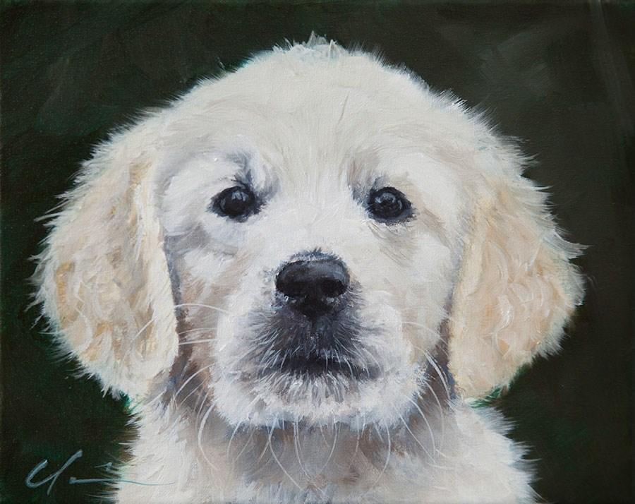 """PAINT MY DOG #1 Little Yukon"" original fine art by Clair Hartmann"