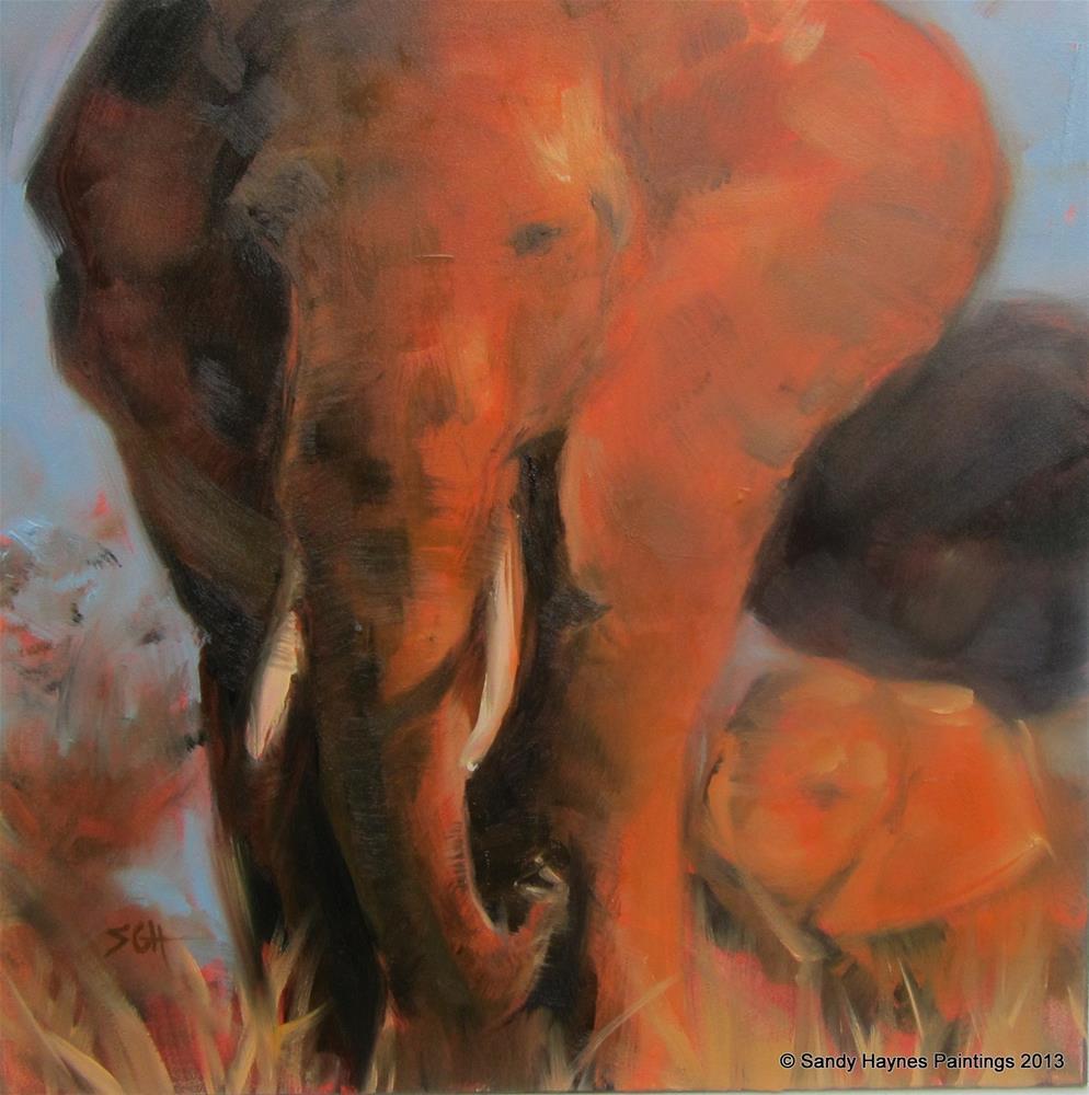 """African Elephant #139"" original fine art by Sandy Haynes"
