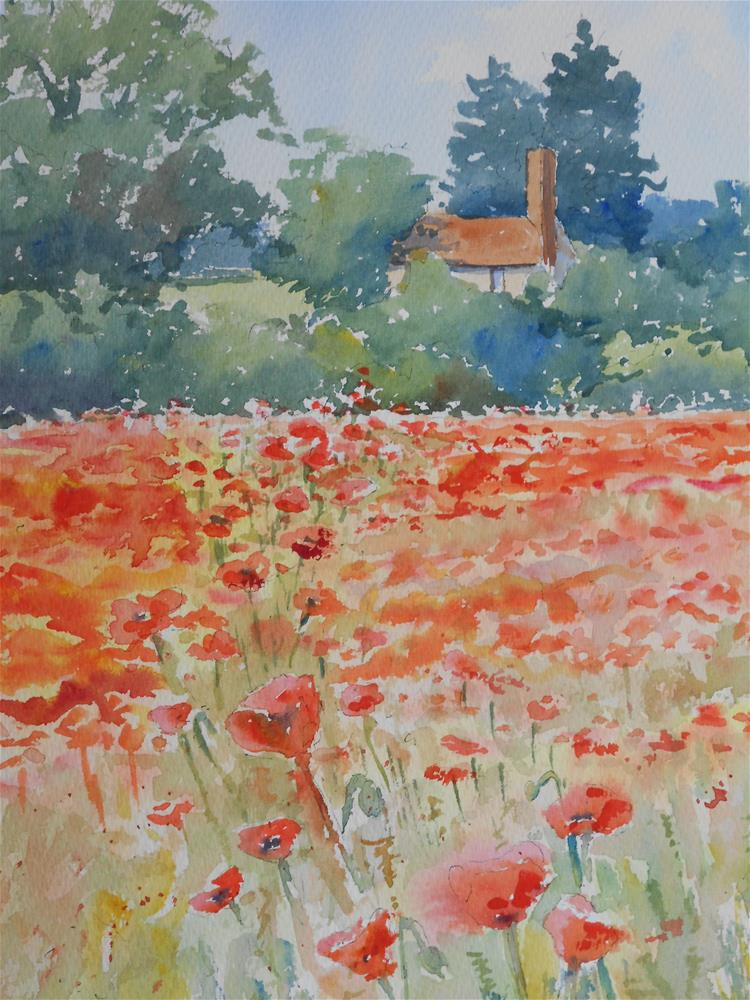 """Where the poppies grow"" original fine art by Graham Findlay"