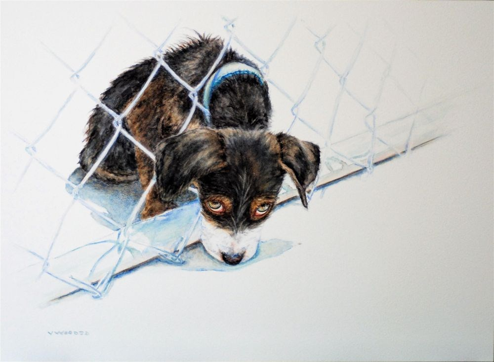 """Don't leave without me..."" original fine art by Vicki Wood"
