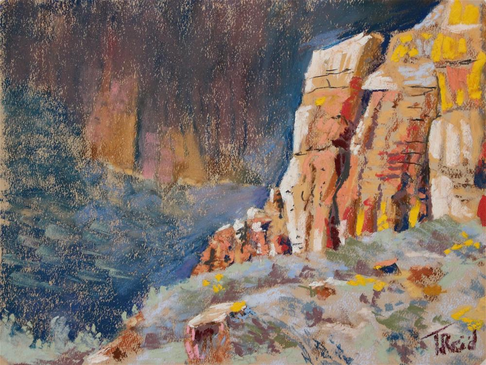 """Ayes Canyon"" original fine art by Toby Reid"