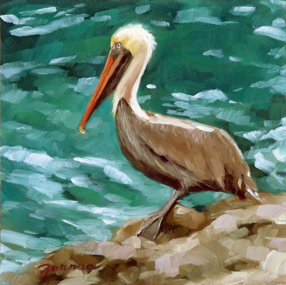 """Basking Pelican"" original fine art by Joanna Bingham"