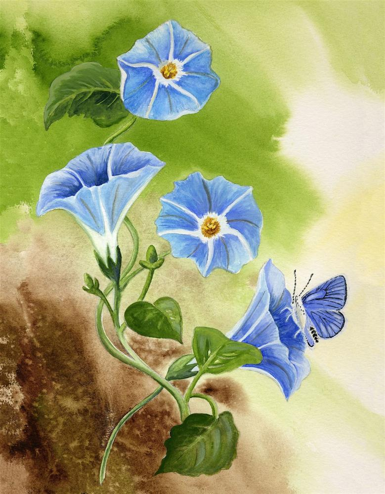 """Morning Glory with Blue Copper Butterfly"" original fine art by Michelle Wolfe"