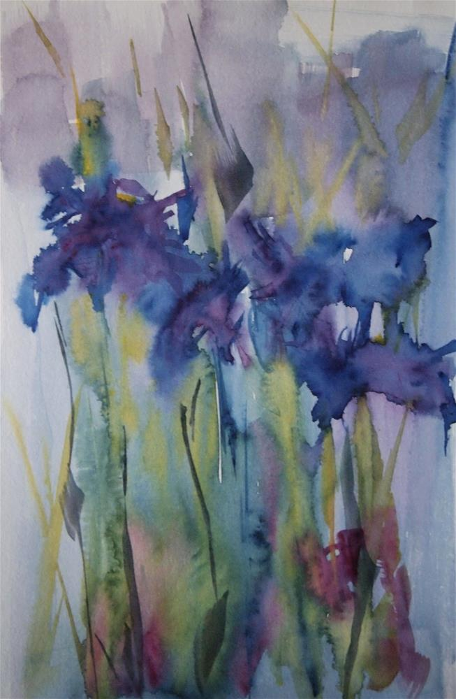 """Siberian Iris, Redux"" original fine art by Amy Bryce"