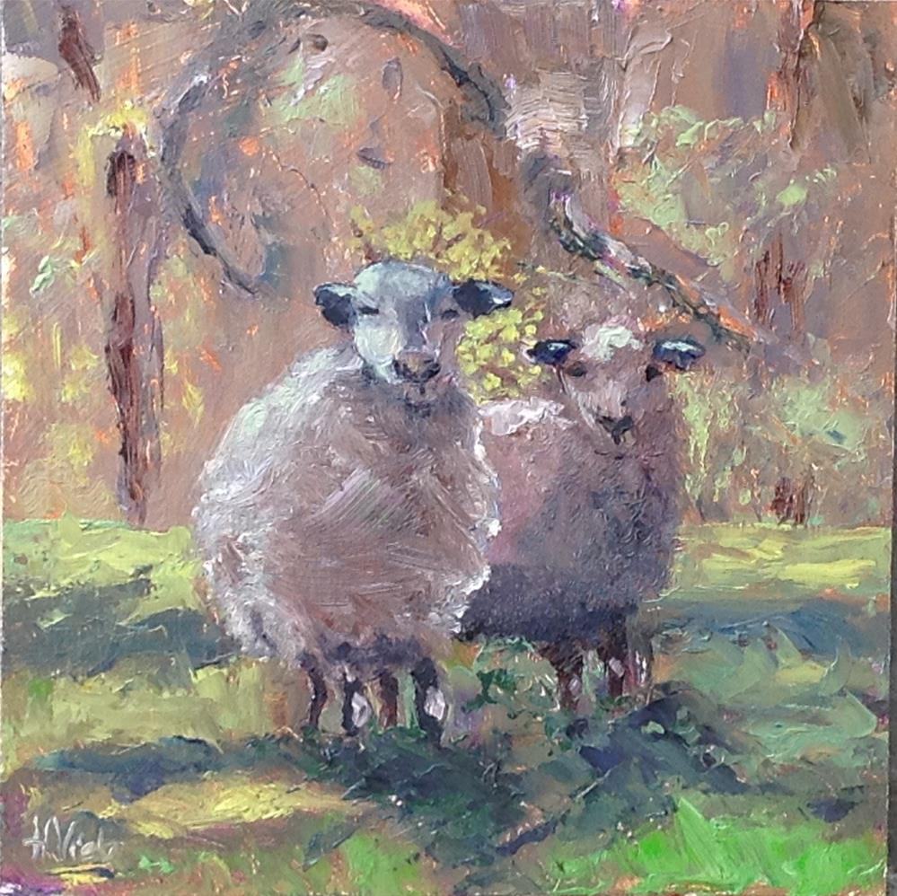 """Cashen Sheep-Roxbury Road"" original fine art by Helen Viebrock Hamel"