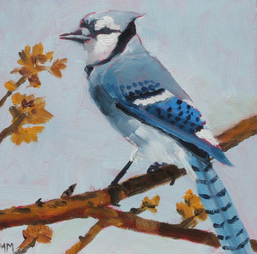 """Blue Jay"" original fine art by Maria McNitt"