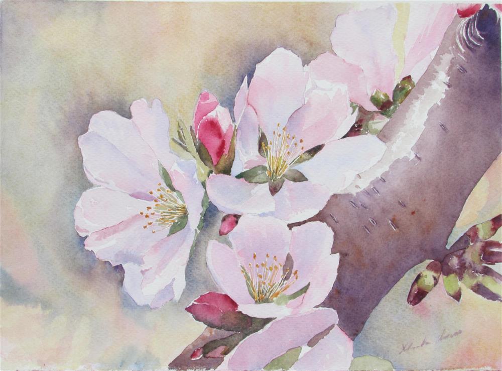 """Almond Blossom"" original fine art by Yolanda Moreno"