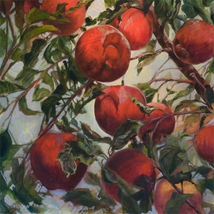 """Donald's Apples"" original fine art by Carolynn Doan"