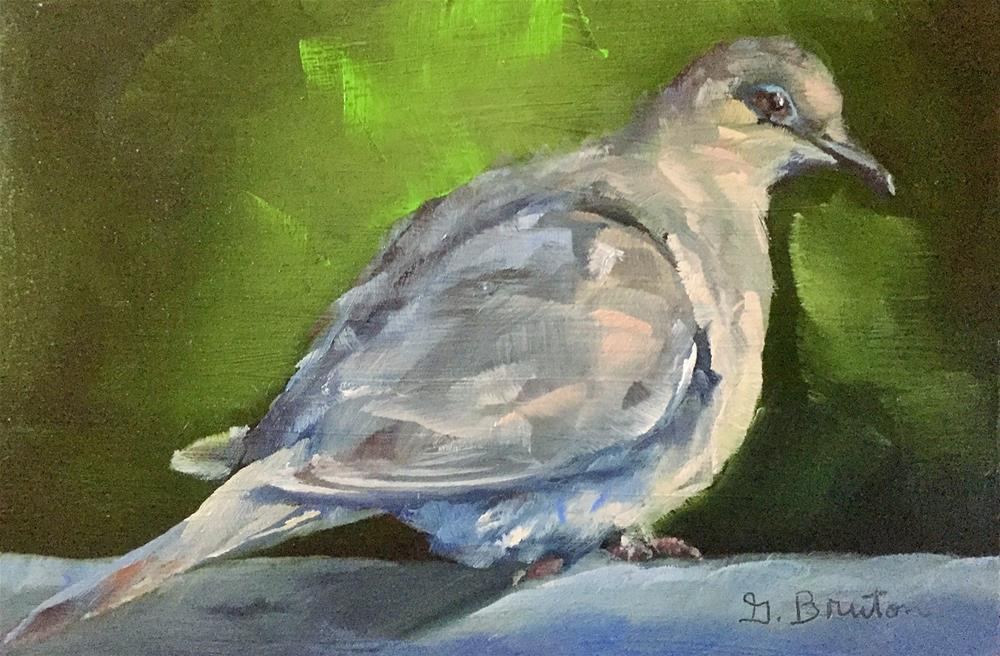 """Morning Dove"" original fine art by Gary Bruton"