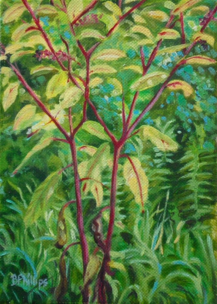 """Poke weed"" original fine art by Beverley Phillips"