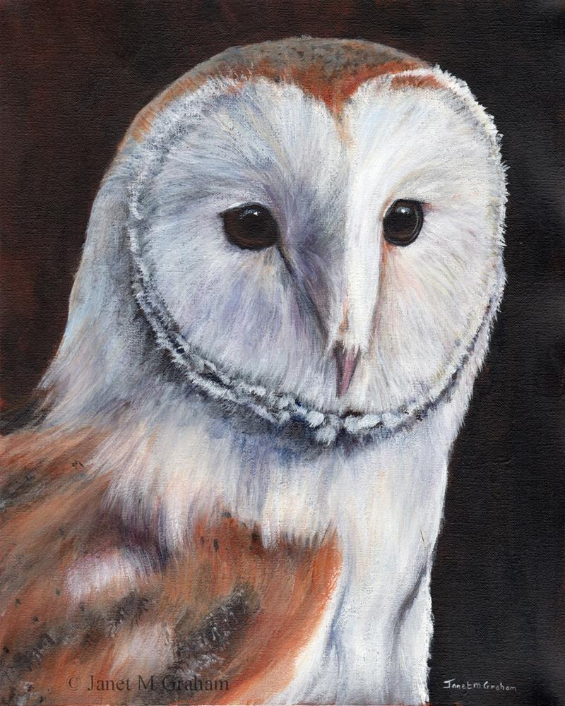"""Barn Owl"" original fine art by Janet Graham"