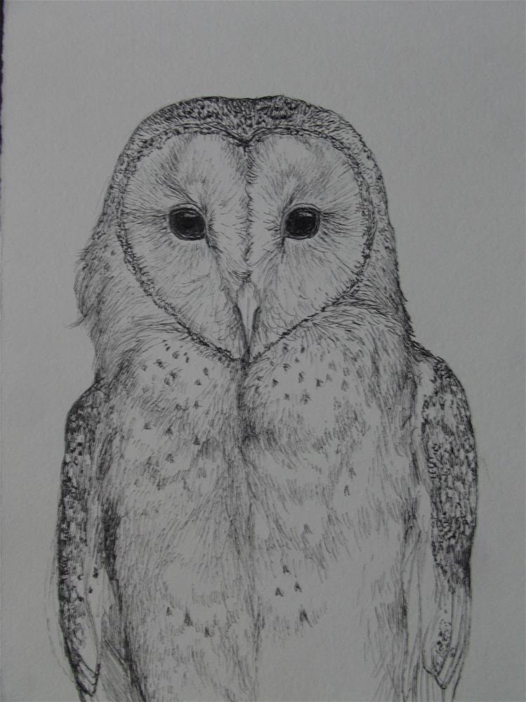"""Barn Owl Study"" original fine art by wanda sigafus"