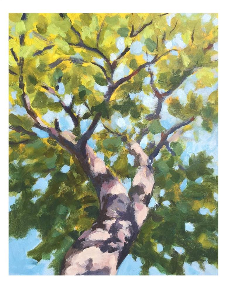 """Tree"" original fine art by Suzanne Woodward"