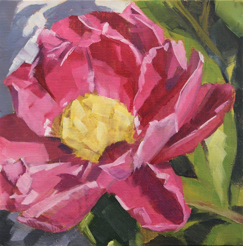 """Pink Rose"" original fine art by Jamie Stevens"