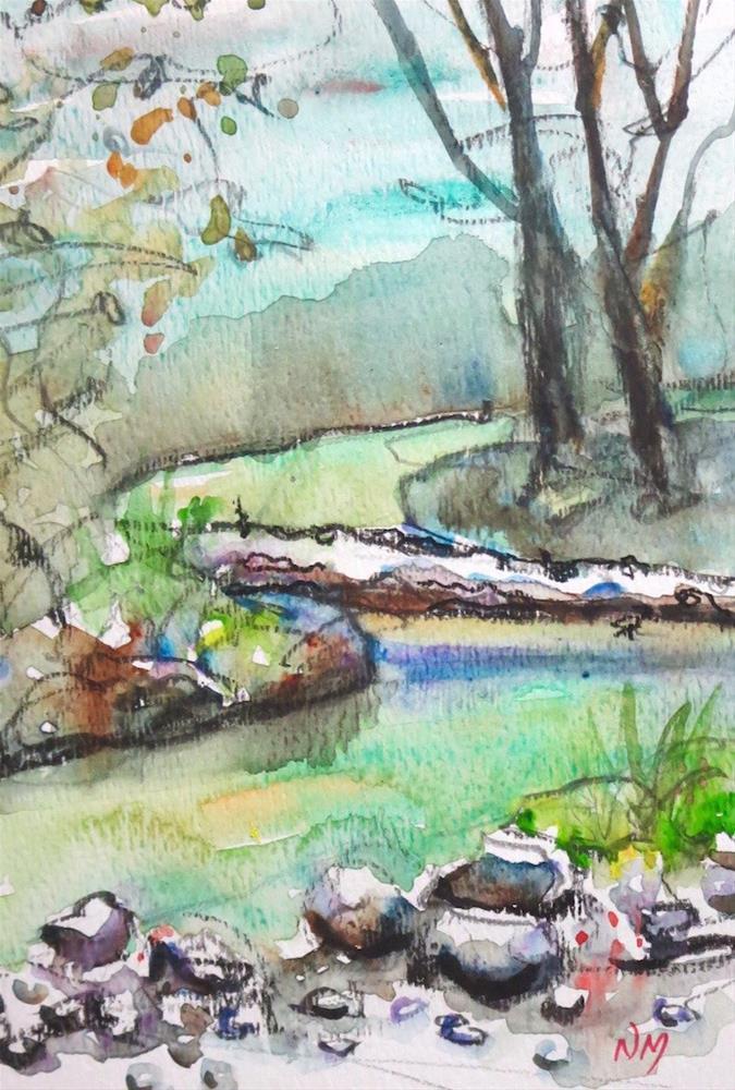 """""""fallen tree"""" original fine art by Nora MacPhail"""