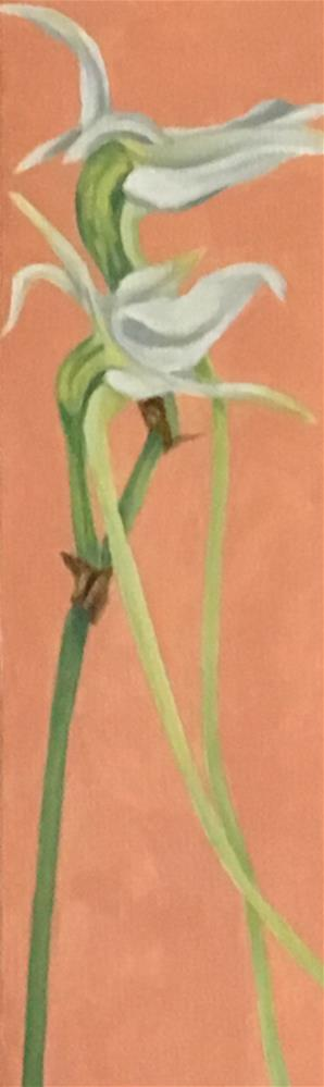 """Star Orchid"" original fine art by Karen Collins"