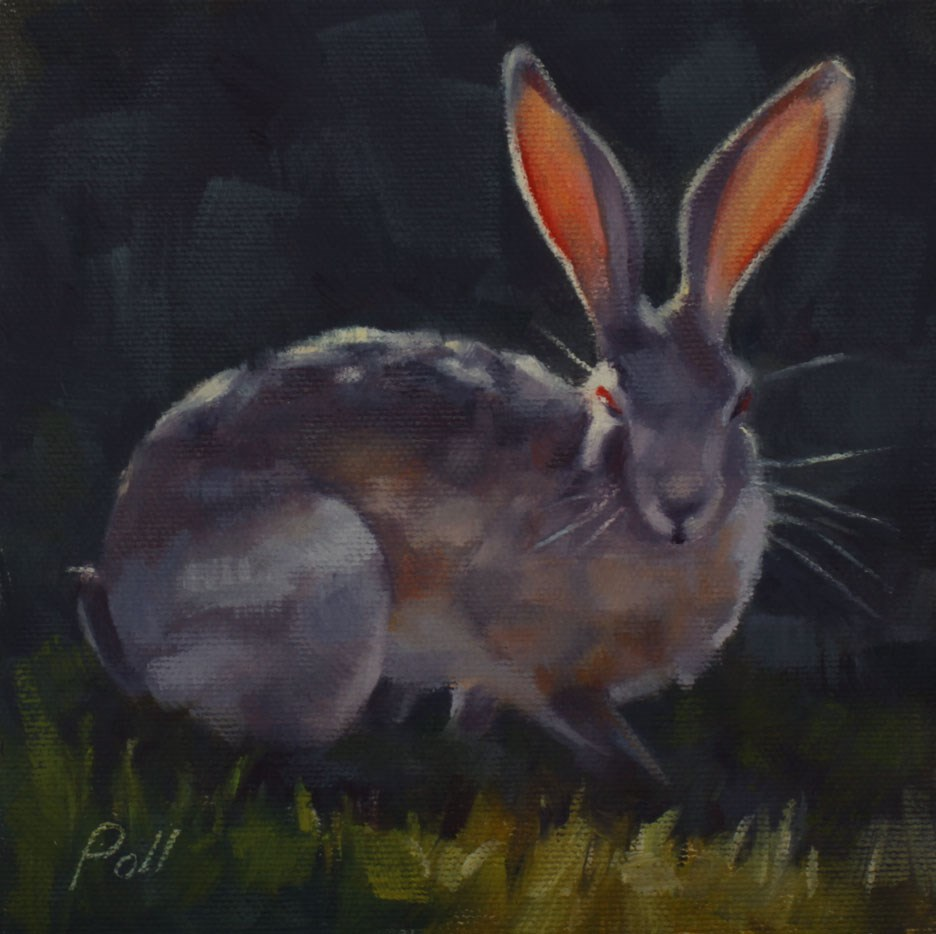 """Red Eye Jackrabbit"" original fine art by Pamela Poll"