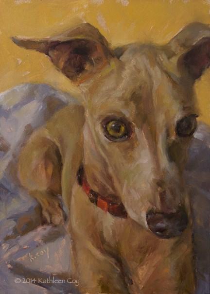 """Day 21 - Italian Greyhound"" original fine art by Kathleen Coy"