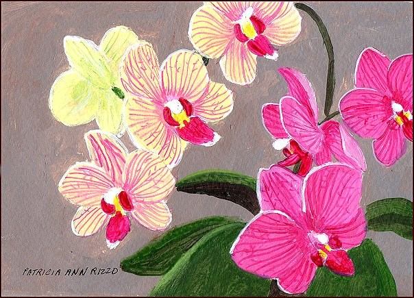 """My Orchids"" original fine art by Patricia Ann Rizzo"