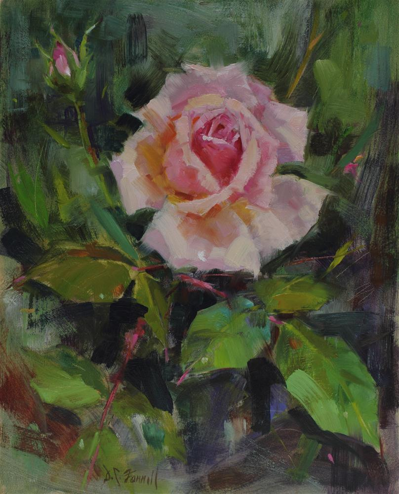 """Pink Rose"" original fine art by Donna C Farrell"