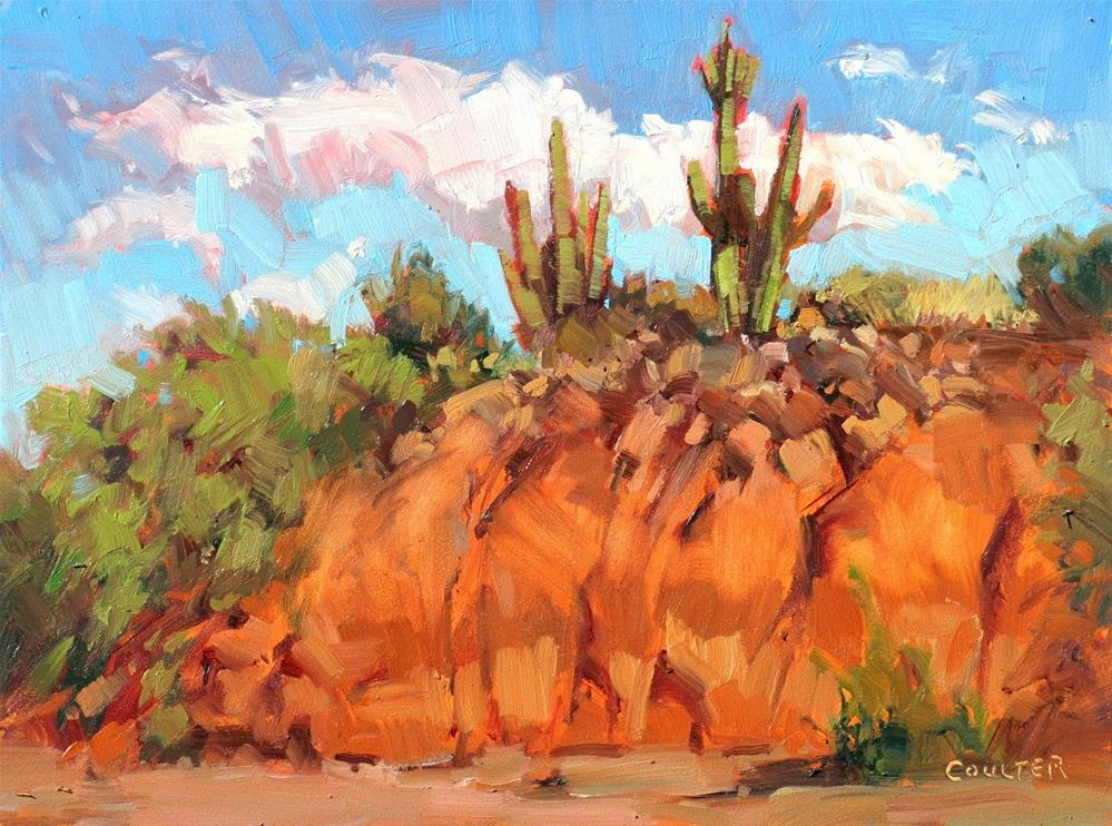 """SAGUARO BLUFF"" original fine art by James Coulter"