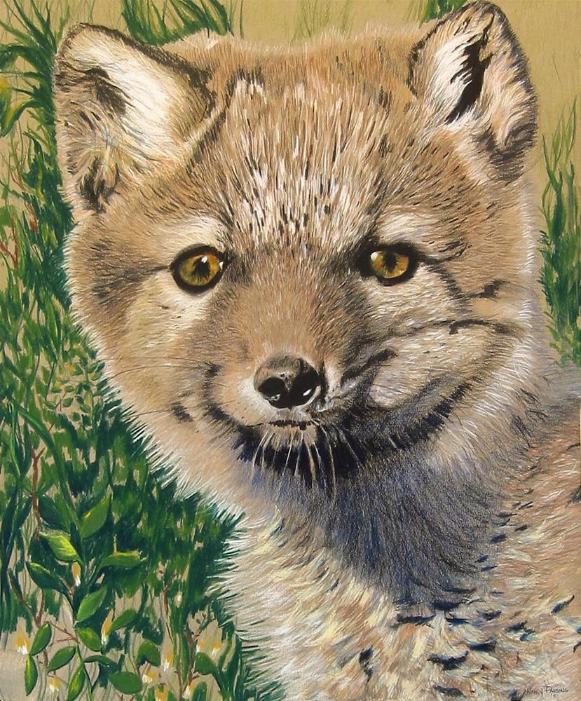"""Arctic fox"" original fine art by Nancy Parsons"