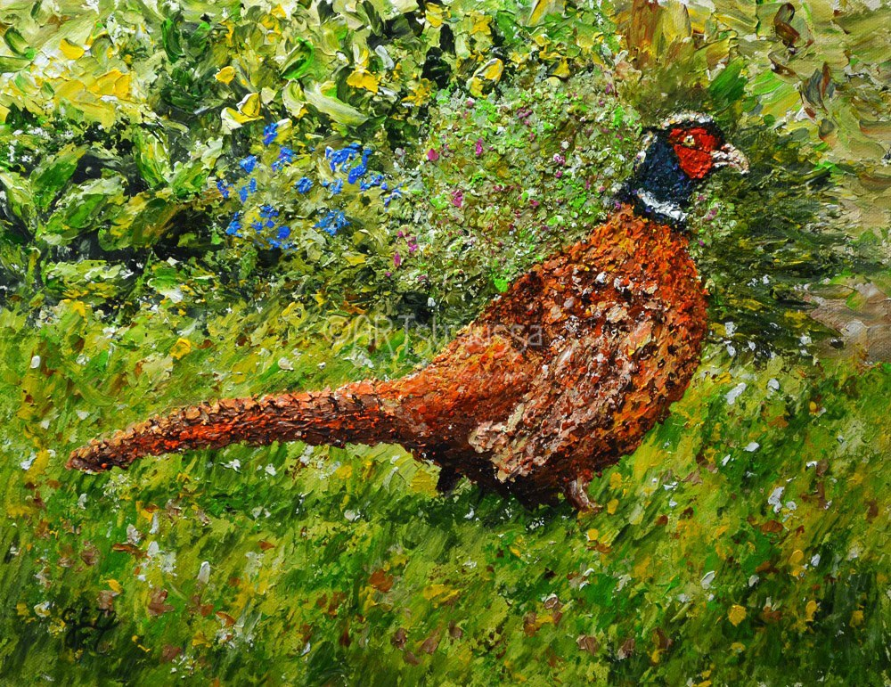"""Pleasant Pheasant"" original fine art by Gloria Ester"