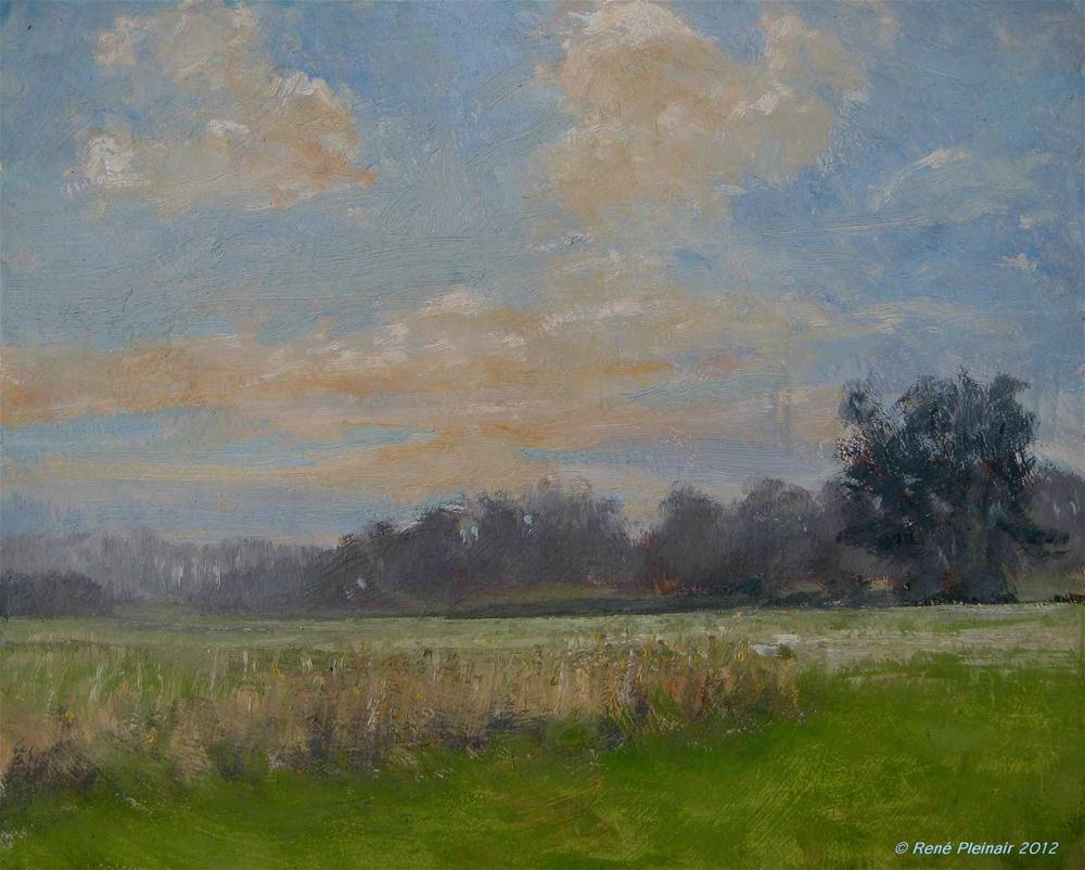 """""""Goedemorgen Doetinchem Doetinchem, Holland"""" original fine art by René PleinAir"""