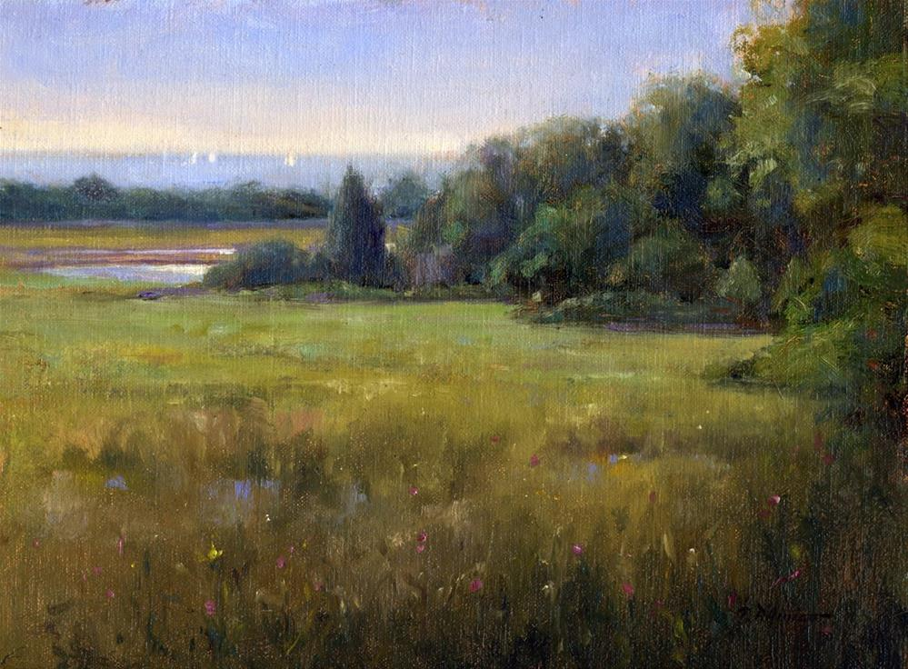 """The Marshland"" original fine art by tony damico"