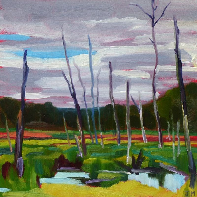 """Swamp at the Tourne"" original fine art by Jessica Miller"