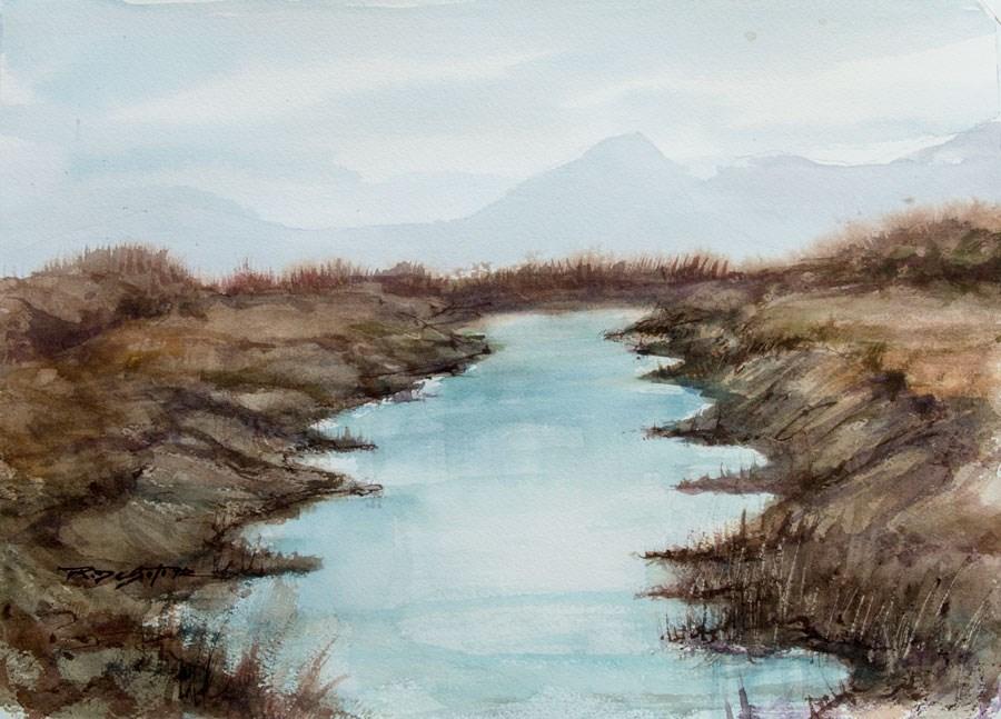 """Wetlands Study"" original fine art by Rafael DeSoto Jr."