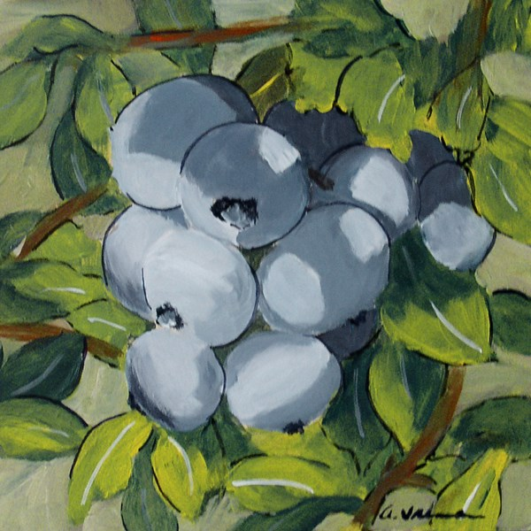 """Blueberry Bunch"" original fine art by Anna Vreman"