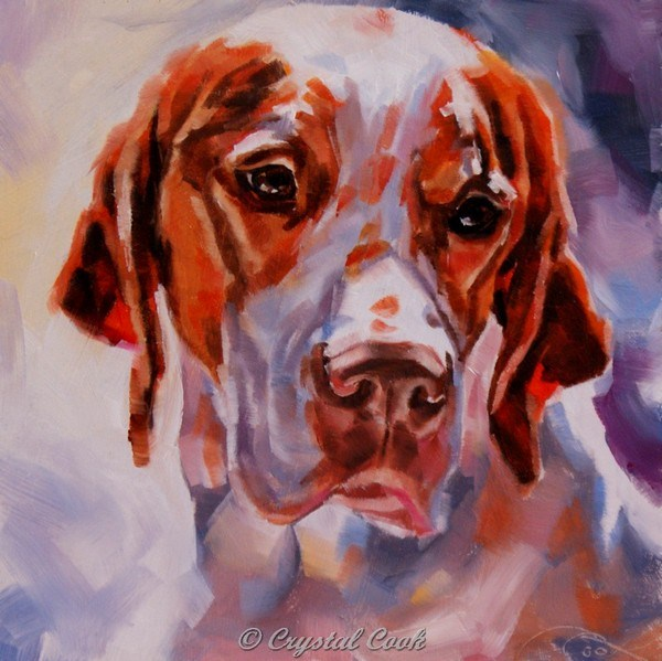 """Cold Nose, Warm Heart"" original fine art by Crystal Cook"