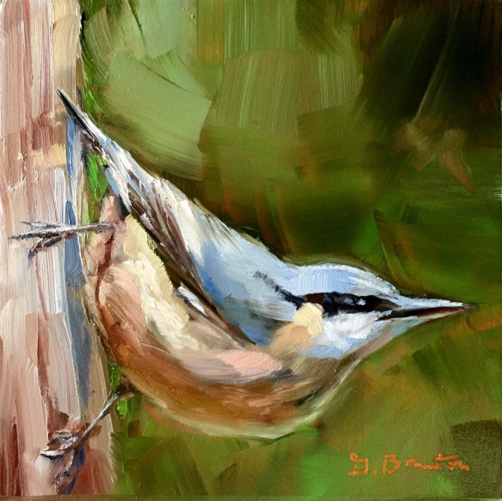 """Nuthatch"" original fine art by Gary Bruton"