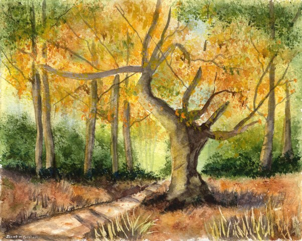 """Autumn Begins"" original fine art by Janet Graham"
