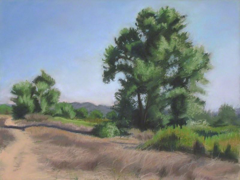 """Two Cottonwoods, Sepulvida Basin"" original fine art by Susan Z. Forbush"