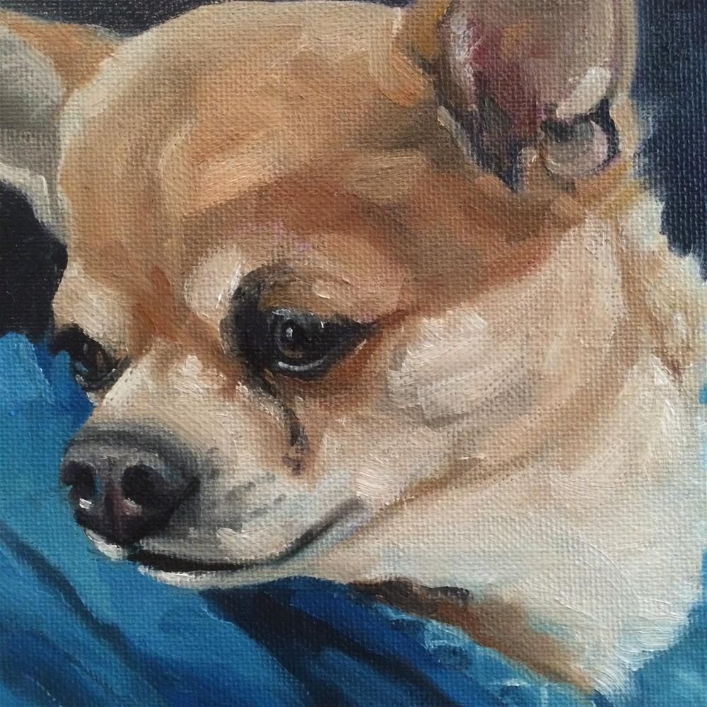 """Hi Chihuahua"" original fine art by Carol Stickley"