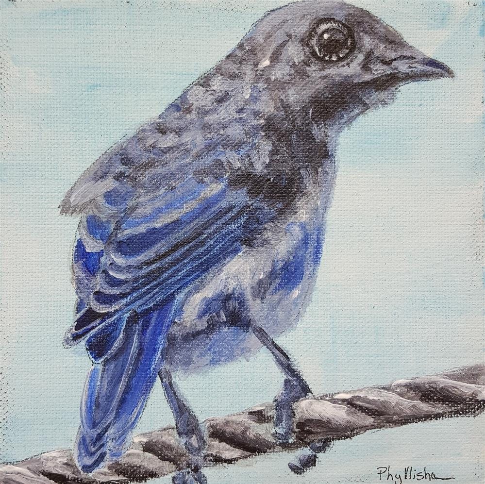 """Bluebirds are in Trouble"" original fine art by Phyllisha Hamrick"