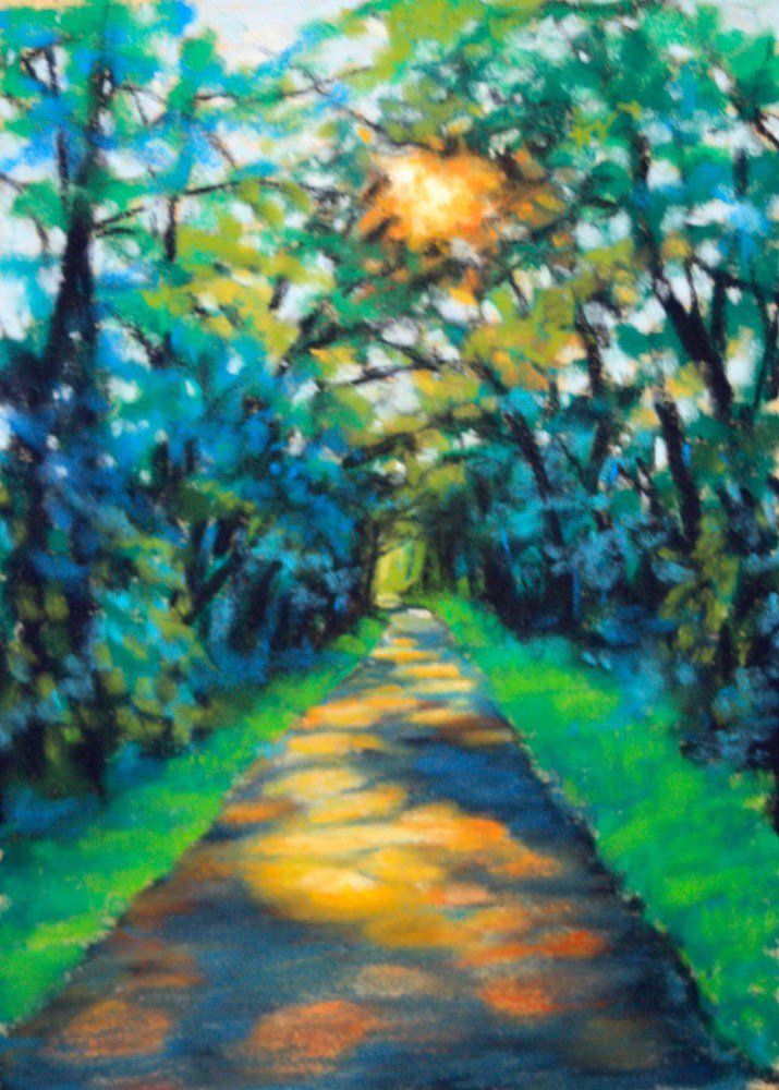 """Sunlight & Shadow"" original fine art by Jill Bates"